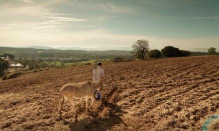 """Pour une juste rétribution de l'agriculture – Je vous remercie """"petits agriculteurs"""", ce que tu fais est essentiel pour tous … : Intention de prières du Pape avril 2016"""