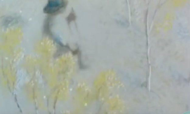 L'Homme qui Plantait des Arbres – Un texte de Jean Giono animé par Frederic Back.