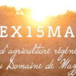 REX15 MAZY