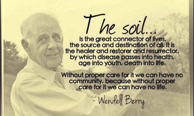 La norme de la pensée agraire… par Wendell Berry, agriculteur et poète de la terre