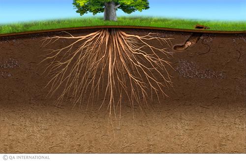 Soigneurs de terres – A2 – Un mouvement planétaire pour sauver la terre est en train de naître