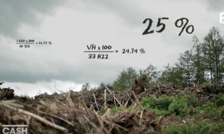 Cash Investigation – Razzia sur le bois, les promesses en kit des géants du meuble / intégrale