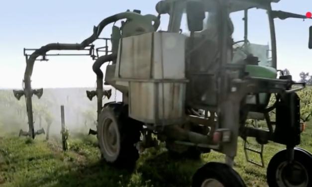 Cash Impact – Pesticides : notre santé en danger