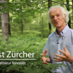 ERNST ZÜRCHER, EXPERT EN LANGUE DES BOIS… – EN AGROFORESTERIE