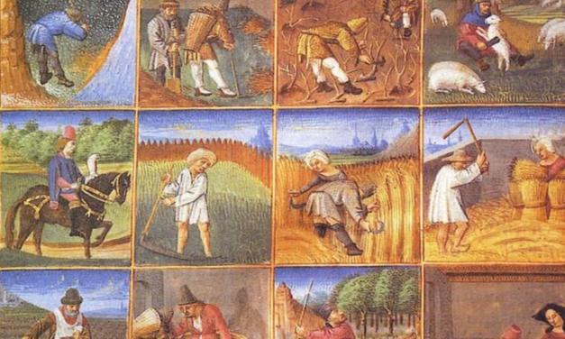 Mille ans de savoir-faire paysan face au « progrès »