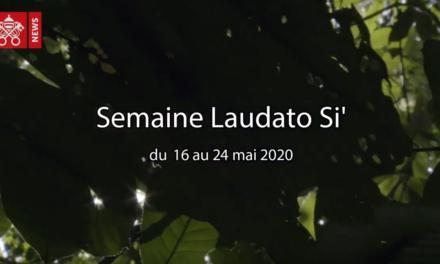 Le pape François invite les communautés catholiques du monde entier à célébrer la Semaine Laudato Si' du 16 au 24 mai 2020.