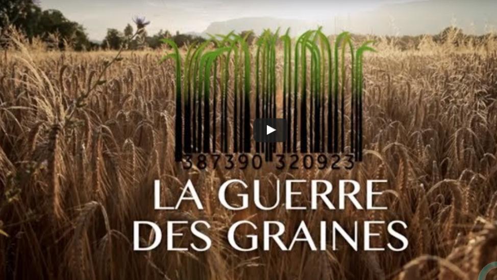 LA GUERRE DES GRAINES – LaTeleLibre.fr