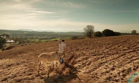 Pour une juste rétribution de l'agriculture – Je vous remercie «petits agriculteurs», ce que tu fais est essentiel pour tous … : Intention de prières du Pape avril 2016